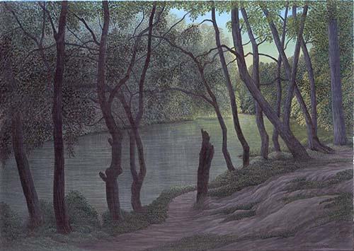 Silent Woods - Waggoners' Wells