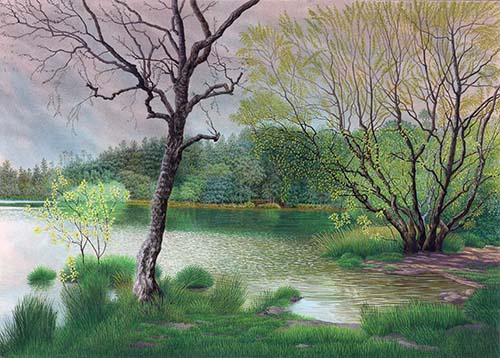 Surrey Spring Elstead Moat Pond