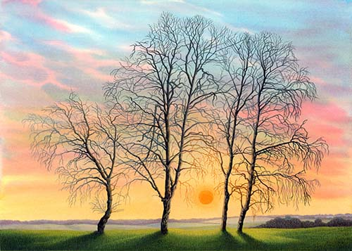 Surrey Winter - Birches near Eashing